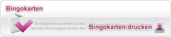 online casino euro bingo online spielen